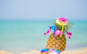 Picture sand, sea, beach, summer, the sky, stay, glasses, relax, summer, pineapple, beach, vacation, sea, sand, …