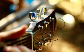 Picture guitar, strings, tool, Grif