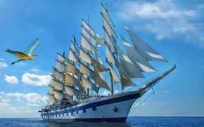 Picture romance, ship, sailing