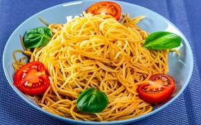 Picture tomatoes, spaghetti, pasta