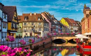 Picture flowers, the city, France, home, channel, the bridge, promenade, Colmar