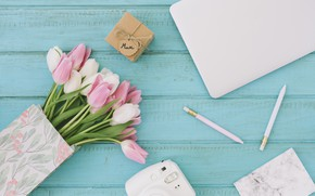 Picture gift, bouquet, the camera, tulips, composition