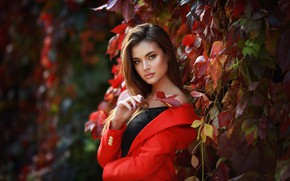 Picture autumn, look, leaves, the sun, model, portrait, makeup, hairstyle, brown hair, beautiful, in red, nature, …