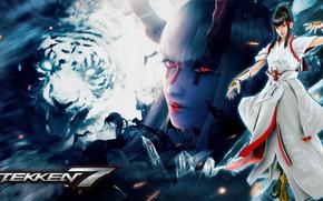 Picture Tiger, Tekken, Tekken 7, Kazumi Mishima