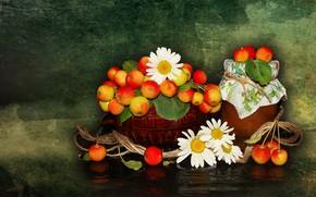 Picture flowers, nature, mood, apples, chamomile, beauty, vase, basket, beautiful, beautiful, kitaika, beauty, harmony, the Wallpapers, …