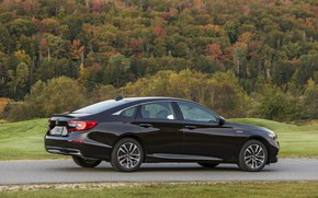 Picture trees, Honda, Accord, sedan, Hybrid, hybrid, 2018, Touring, four-door