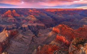 Picture panorama, AZ, USA, National Park Grand Canyon