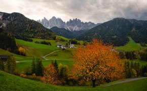 Picture road, greens, autumn, forest, the sky, clouds, mountains, tree, rocks, foliage, the slopes, tops, view, …