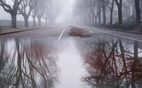 Picture the city, fog, street, puddle