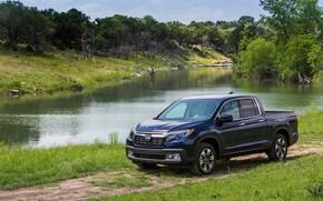 Picture grass, shore, vegetation, Parking, Honda, pickup, pond, dark blue, Ridgeline, 2019