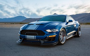 Picture Shelby, 2018, Wide Body, Super Snake