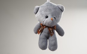 Picture photo, Love, Toy, bear, Gift
