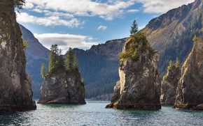 Picture the sky, water, clouds, trees, mountains, nature, the ocean, rocks, Alaska, USA, national Park, Kenai …