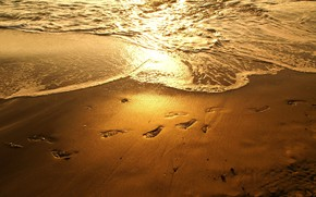 Picture sea, beach, sunset, traces, reflection, the evening