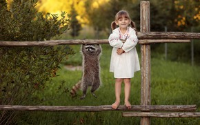 Picture girl, raccoon, funny, the fence