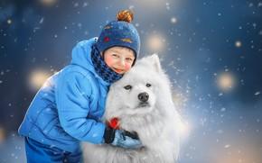 Picture winter, snow, animal, dog, boy, child, dog, Samoyed, Ксения Лысенкова