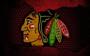 Picture wallpaper, sport, logo, NHL, hockey, Chicago Blackhawks