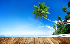 Picture sand, sea, beach, summer, the sky, the sun, palm trees, shore, Board, summer, beach, sea, …