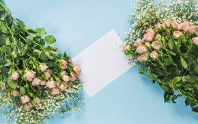 Picture flowers, background, roses, bouquets
