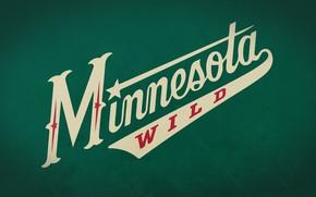 Picture USA, NHL, Minnesota Wild, Saint Paul, Minnesota Wild, hockey club