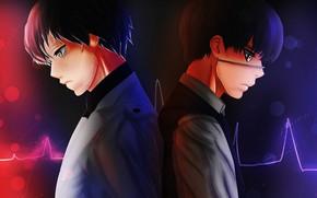 Picture anime, art, guy, Tokyo Ghoul, Tokyo ghoul, The Kaneko Ken