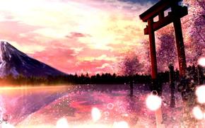 Picture landscape, sunset, nature