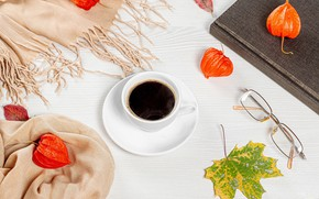 Picture autumn, sheet, coffee, glasses, Cup, physalis