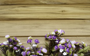 Picture flowers, roses, wood, flowers, purple, roses