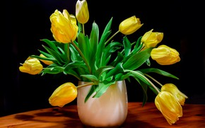Picture flowers, bouquet, yellow, tulips, vase, black background, composition