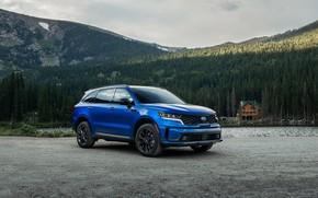 Picture car, machine, forest, mountains, house, blue, wheel, Kia, Sorento, blue car, big car, Kia Sorento