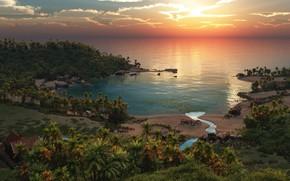Picture palm trees, Fisherman's paradise, shore, Laguna, stream