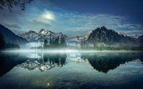 Picture trees, mountains, lake, reflection, morning, Austria, Alps, Austria, Alps, Lake Else, Lake Alm, Almsee Lake