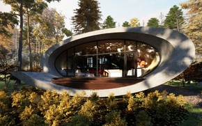 Picture forest, design, architecture, structure, oval