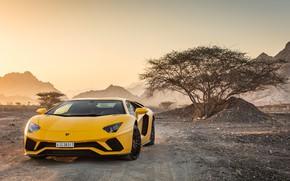 Picture Lamborghini, supercar, 2018, Aventador, Aventador S