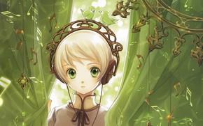 Picture headphones, girl, birds