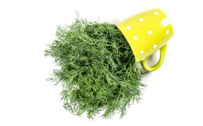 Picture dill, mug, white background