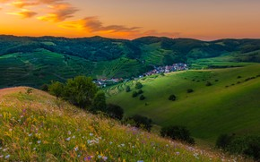 Picture greens, summer, grass, clouds, trees, sunset, flowers, mountains, hills, the slopes, field, beauty, village, Alps, …