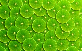 Wallpaper background, green, lime, fruit, slices, background, fruit, lime, frangipani, slice