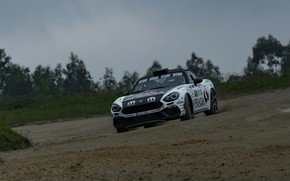 Picture overcast, earth, rally, 2018, Abarth, 124 Rally