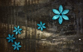 Picture flowers, background, Board