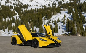 Picture Ford, door, supercar, Ford GT, 2017