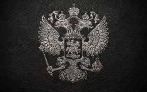 Picture grey, leather, coat of arms, Russia