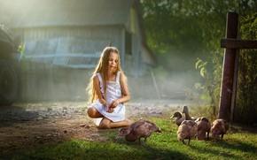 Picture summer, nature, house, duck, girl, child, Dmitry Usanin, Dmitry Yanin