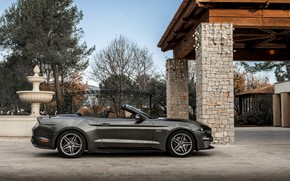 Picture Ford, Parking, profile, convertible, 2018, dark gray, Mustang GT 5.0 Convertible