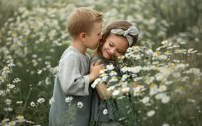 Picture field, summer, flowers, nature, children, romance, chamomile, boy, girl, a couple