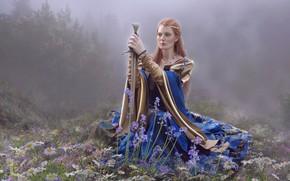 Picture girl, sword, meadow