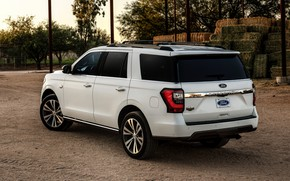 Picture Ford, back, SUV, Expedition, 2020