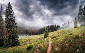 Picture Mountains, Path, Trees