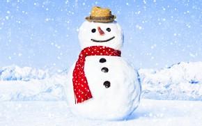 Picture winter, snow, snowman, happy, winter, snow, snowman