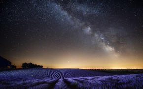 Picture field, the sky, landscape, night, nature, France, stars, lavender, Provence